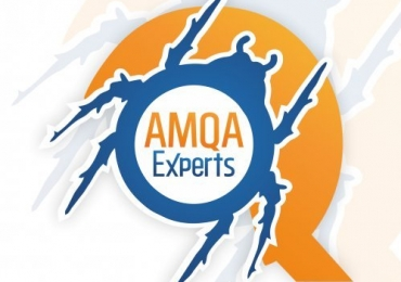 Best Manual Testing Services | AMQA Experts