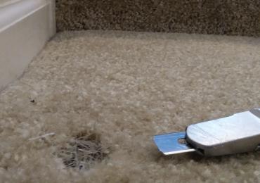 Carpet Repair Sydney